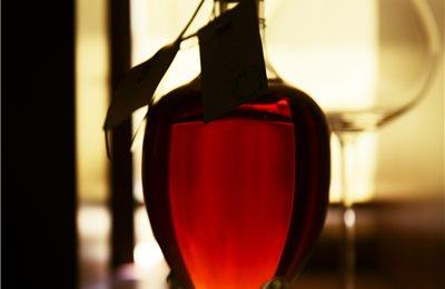 col bt bg cognac embassy 008